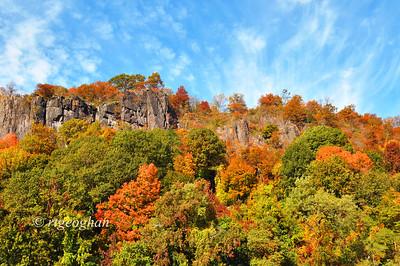 N.J. Palisades - Fall Foliage 2013