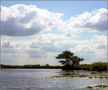 Landschap & Natuur - Landscape & Nature