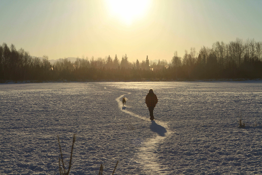 . A woman walks her dog on a trail across frozen Connor Lake in Anchorage, Alaska, on Saturday, Jan. 7, 2017. The temperature was about 7 degrees Fahrenheit. (AP Photo/Dan Joling)