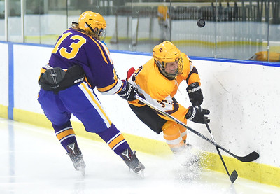 Avon Lake beats Lakewood to advance to Baron Cup finals