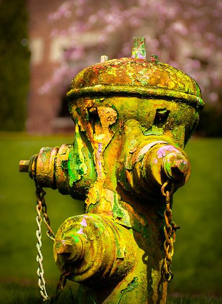 Fire hydrant, Seattle, Washington, 2002
