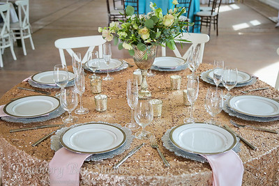 Newberry Estate Vineyards 2018 Bridal Tasting 3-18-2018