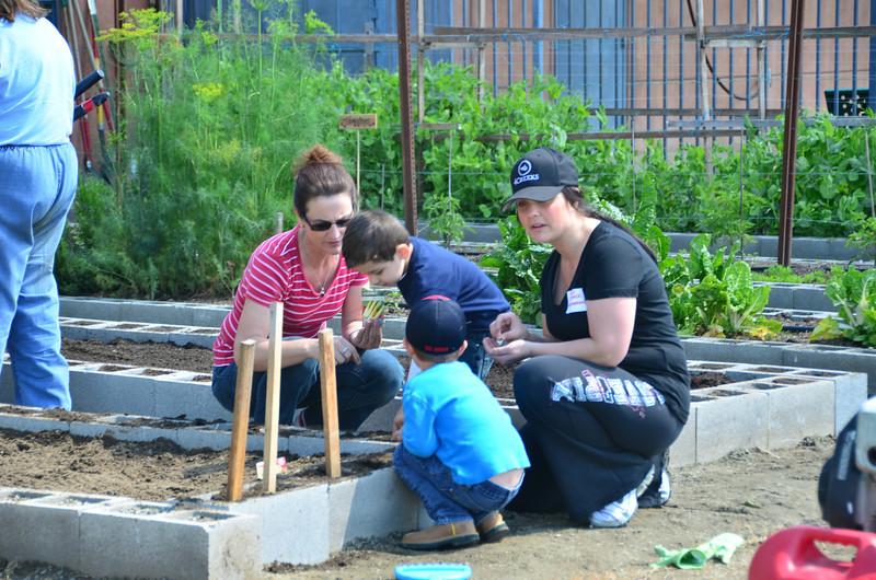 Neighborhood Church Garden - Photo by Dawn Cox.