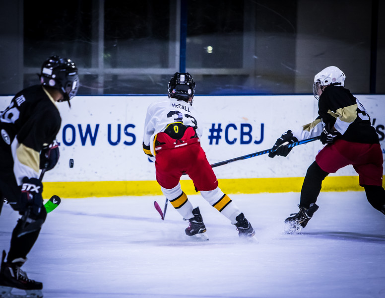 Bruins-226.jpg