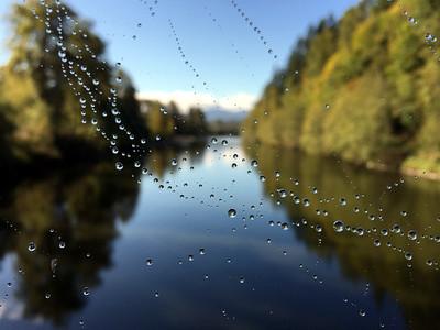 2015.09.26 Spider Web