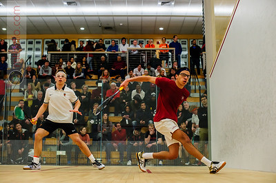 d46 2020-02-29 Marwan Tarek (Harvard) and Cole Becker (Princeton)