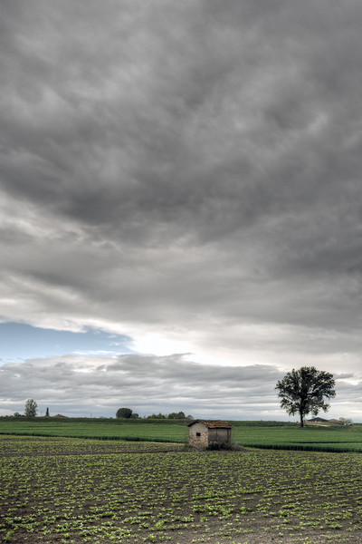 Farmland - Crevalcore, Bologna, Italy - April 24, 2012
