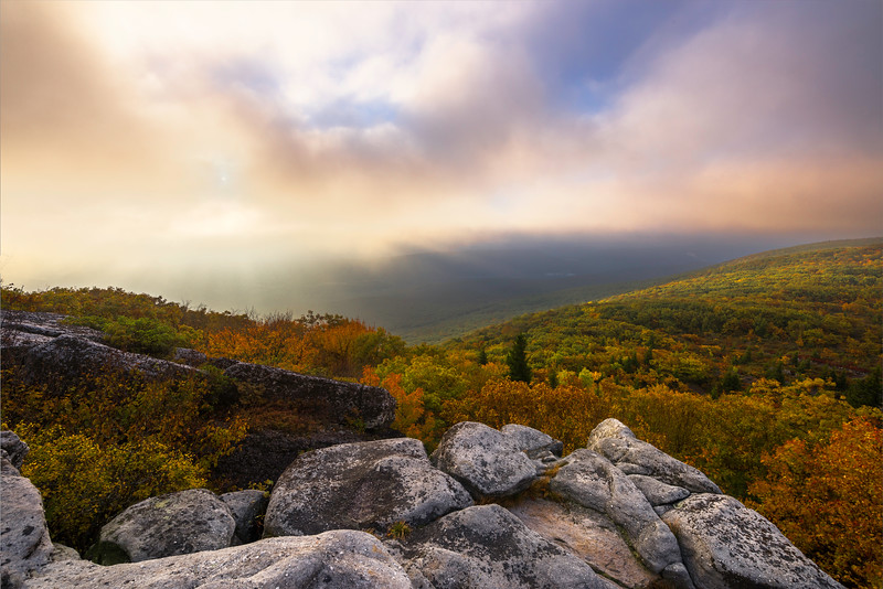 West Virgina Dolly Sods Wilderness Bear Rocks.jpg