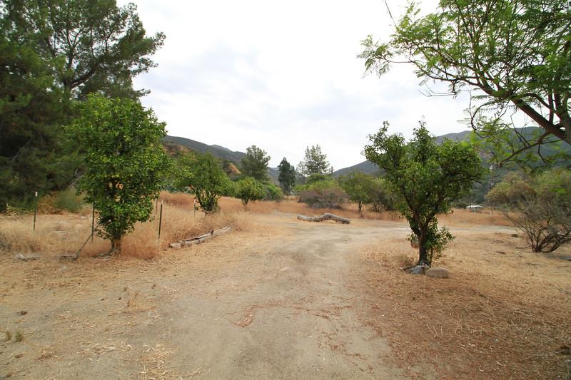 32633-Trabuco-Canyon-Rd-Mitchell-East-Trabuco-Canyon_29.JPG