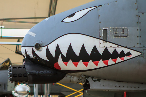 75th Fighter Squadron