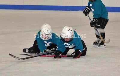 20110218 Mini Mites Hockey