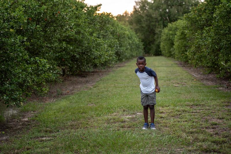 Jayden in orange grove 3.2019 III.jpg