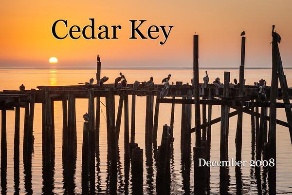 Cedar Key 2008