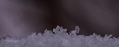 snowflakes-1687.jpg