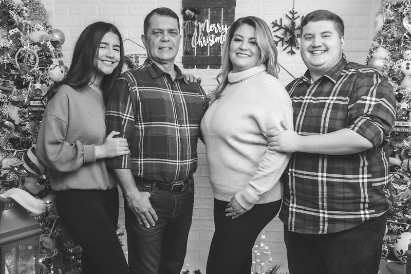 12.18.19 - Vanessa's Christmas Photo Session 2019 - 19.jpg