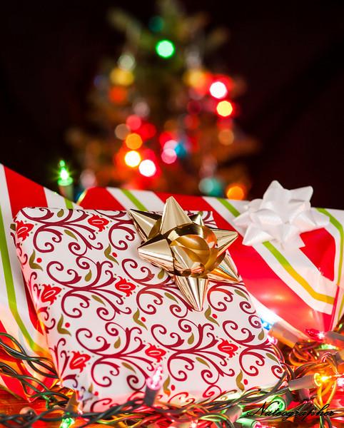 Christmas tree-022.jpg