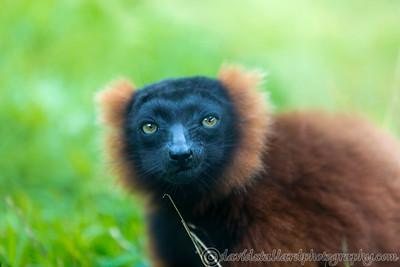 Marwell Zoo 22-09-14