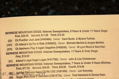Veteran Sweeps 11+ yrs Dogs BMDCA 2015