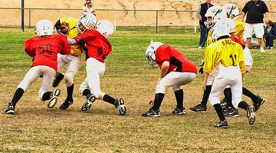 NYS 02-06-10 Cardinals vs Eagles