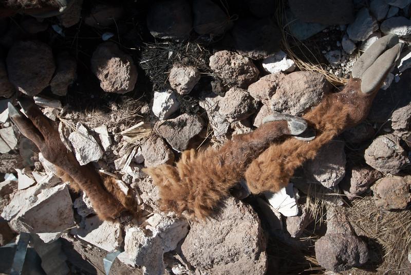 Tupiza to Uyuni 20120529 (122).jpg