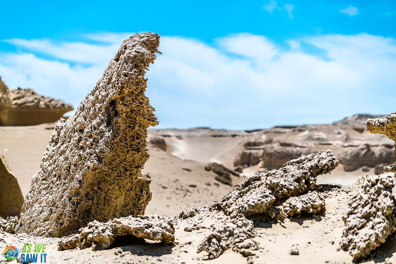 Wadi-El-Hitaan-02423.jpg