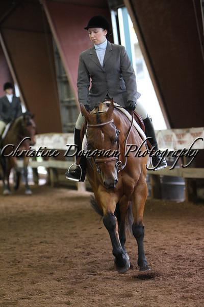 Senior Hunter Under Saddle