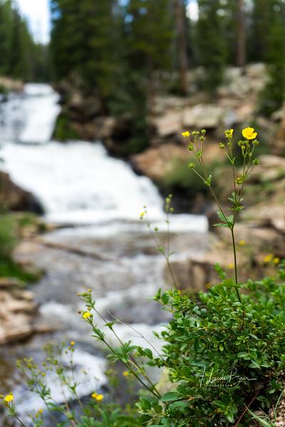 Provo River Falls-Mirror Lake-16.jpg