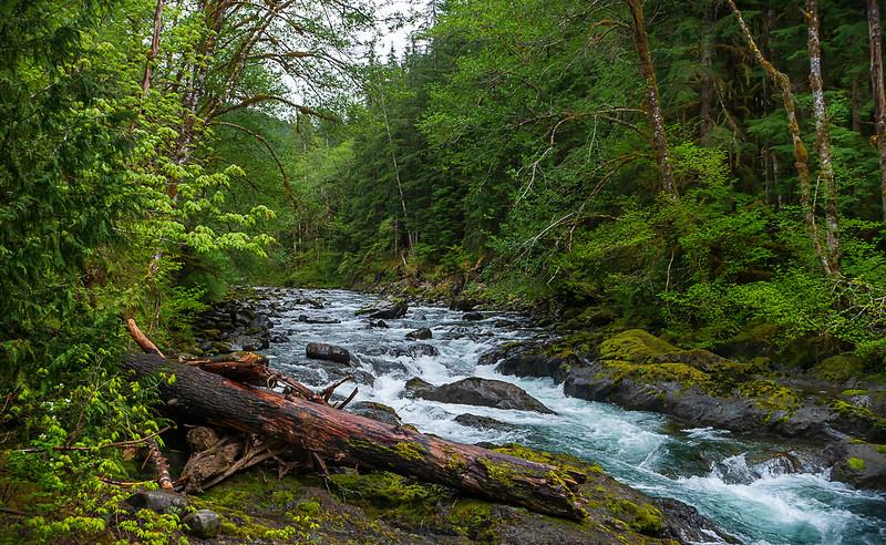 Salmon Cascades. Sol Duc River