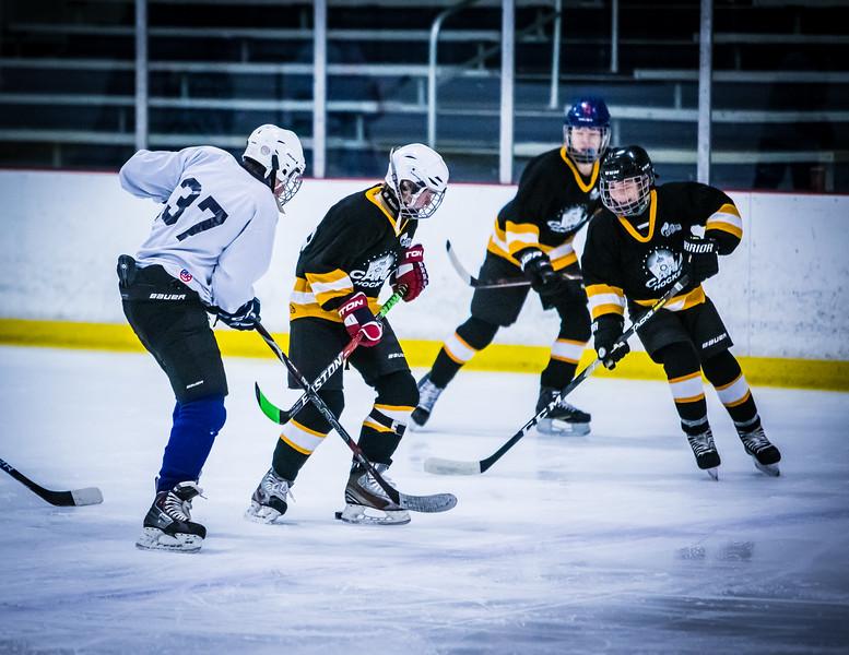 Bruins2-85.jpg