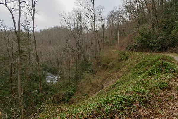 Davidson River Trail (#650)