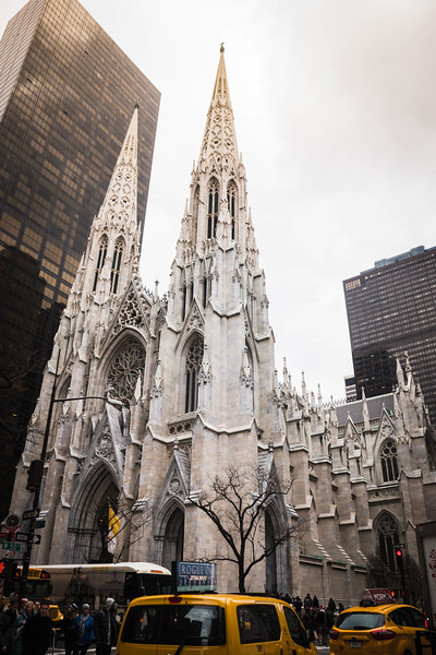 St Patricks Cathedral tall 1.jpg