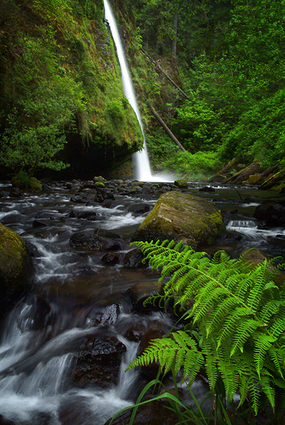 waterfalls 3 (1).jpg