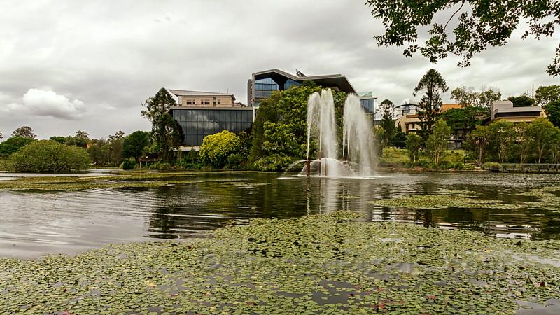Lake & Fountain, St Lucia Campus, U of Q