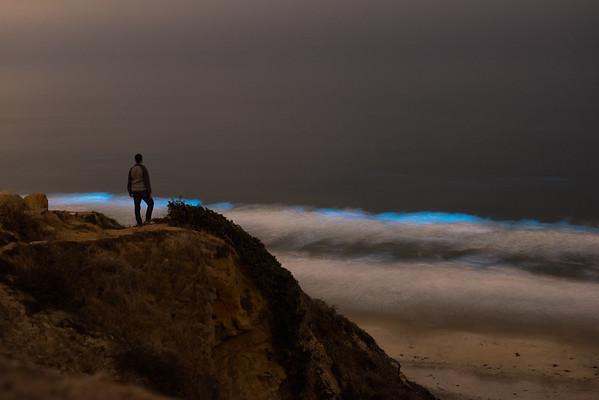 How to find Bioluminescence: San Diego Bioluminescence 2018