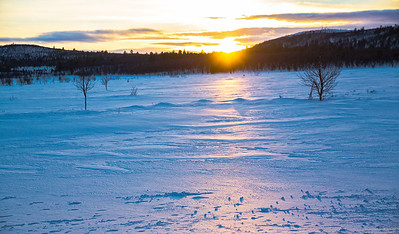 Finland/Lapland - Winter 2015