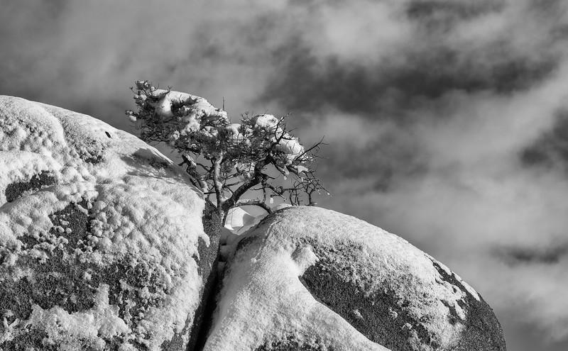 Splitting the rock