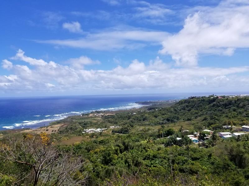 Barbados (42).jpg
