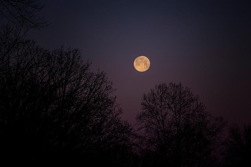 3.2.18 - Prairie Creek Marina: Luna (Worm Moon)