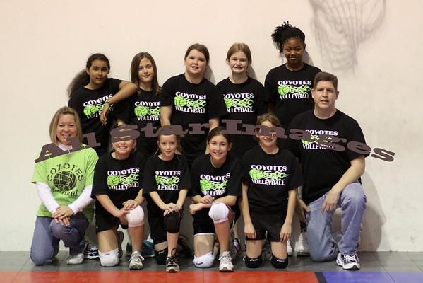 Volleyball 2011-12