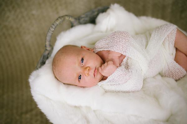 Adelina | Newborn