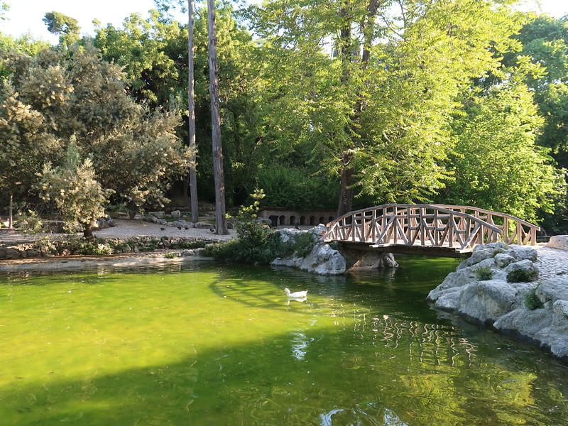 IMG_7704-national-garden-pond.JPG