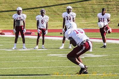 AAMU 2019 Fall 1st Afternoon Scrimmage
