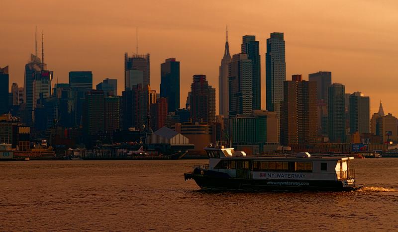NY Gold-.jpg