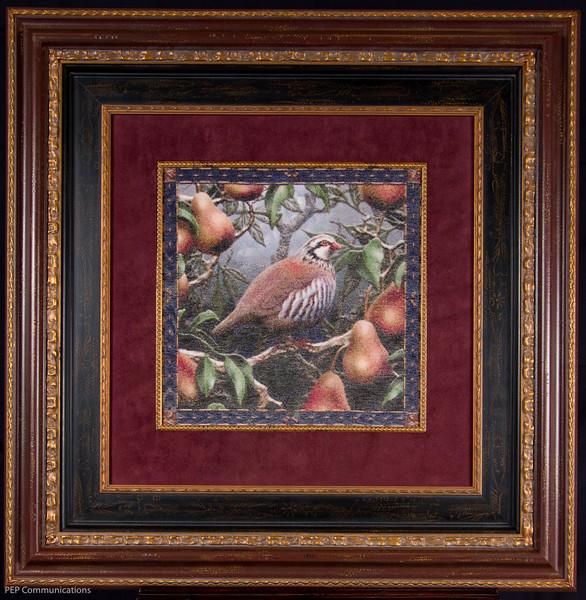 Live Partridge in a Pear Tree.jpg