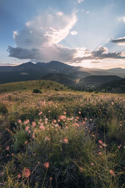 Arizona_Landscape_Photographer-15.jpg