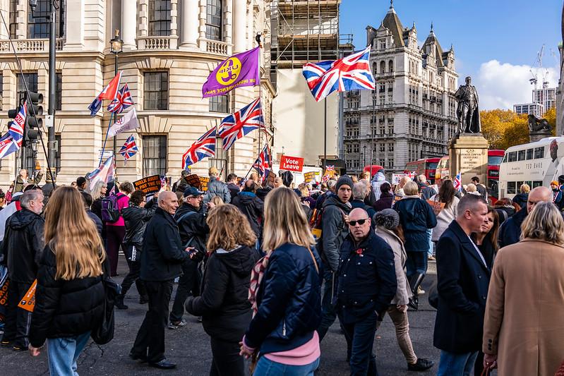 Pro Brexit protestors.jpg