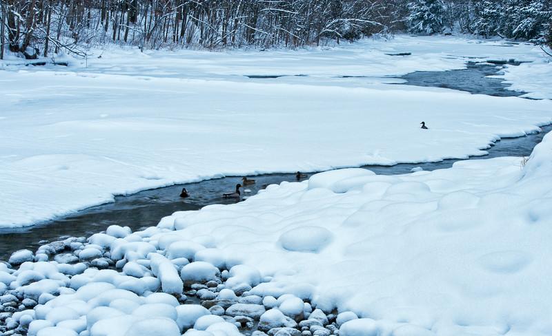 Jock river_winter_Jan 30-11_04.jpg