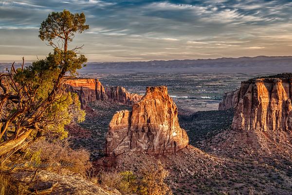Colorado - Other