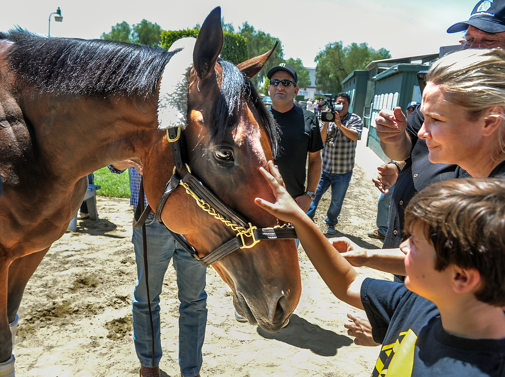. Bob Baffert son Bode Baffert and wife Jill  with American Pharoah at Santa Anita Park. Racehorse American Pharoah returned to Southern California, Thursday, June 18, 2015, for the first time since breaking a 37-year Triple Crown drought by winning the Kentucky Derby, Preakness and Belmont Stakes. American Pharaoh was aboard an equestrian airline from Louisville, Ky., to Ontario International Airport, where he will be loaded into a van and driven to Santa Anita Park.(Photo by Walt Mancini/Pasadena Star-News)