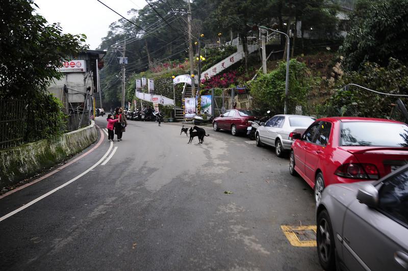 20110123_TaipeiDay2_0070.JPG